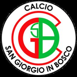 San Giorgio In Bosco logo