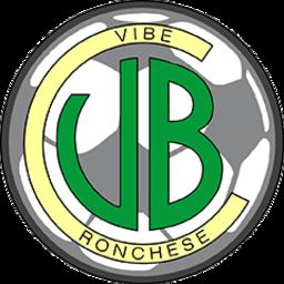 Vibe Ronchese logo