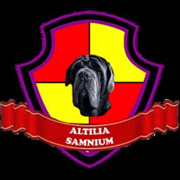 Altilia Samnium logo