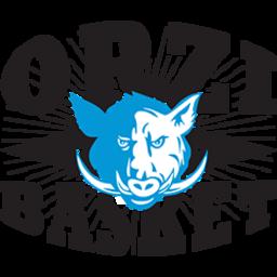 Orzinuovi logo