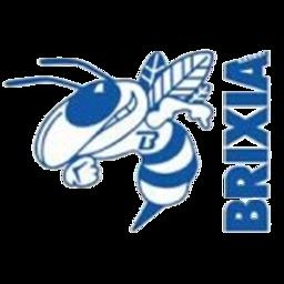 Brixia logo
