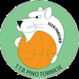 Torino Teen logo