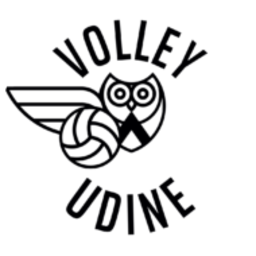 Rizzi Volley logo