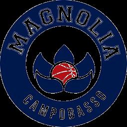 Magnolia Basket Campobasso