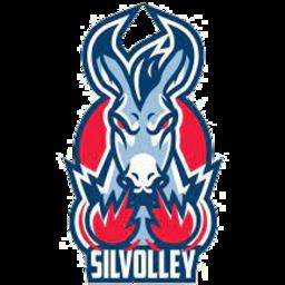 Silvolley Trebaseleghe logo