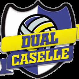Dual Caselle logo