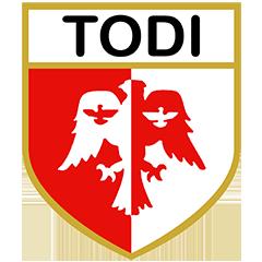 Todi logo
