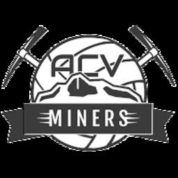 Miners logo