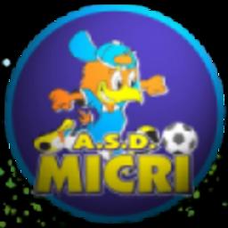 Micri logo