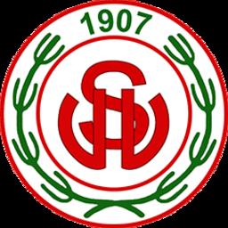 Vignolese logo