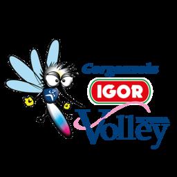 Novara Volley logo