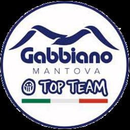 Gabbiano Mantova logo