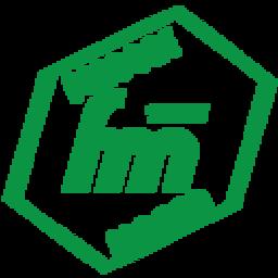 Folgore Massa logo